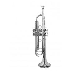 Trompet verzilverd