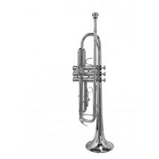 Beginners trompet verzilverd